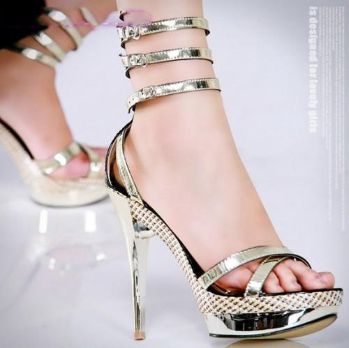 Exclusive-High-Heel-Shoes-for-Women-2014-51